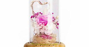 toogoo rose streamer flasche led nachtlicht wiederaufladbare drahtlose bluetooth lautsprecher mit blume glas dekorative tischlampe rosa 310x165 - TOOGOO Rose Streamer Flasche Led Nachtlicht Wiederaufladbare Drahtlose Bluetooth Lautsprecher Mit Blume Glas Dekorative Tischlampe (Rosa)